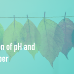 differences between ph and litmus paper