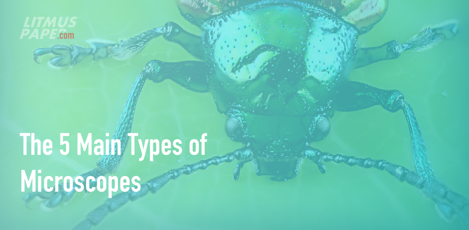 the 5 main types of microscopes