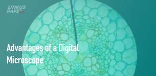 Advantages of a Digital Microscope